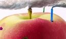 蔡叔叔讲画 10.创意绘画之苹果工厂