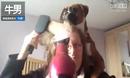 「不准攻击我的主人 」拳师犬 想咬走吹风机