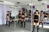 权威钢管舞教师技巧培训