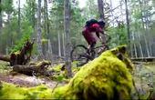 【骑行达人】03、穿越原始森林 速降大神进入童话般世界