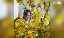 她在丛中笑!网曝49岁王菲近照仍显娇俏